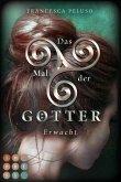 Erwacht / Das Mal der Götter Bd.2 (eBook, ePUB)