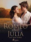 Romeo und Julia auf dem Dorfe (eBook, ePUB)