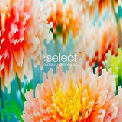 Global Underground:Select #5 - Diverse