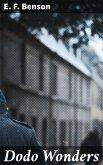 Dodo Wonders (eBook, ePUB)