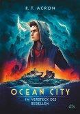 Im Versteck des Rebellen / Ocean City Bd.2