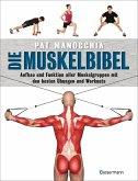 Die Muskelbibel. Aufwärmtraining, Muskelaufbautraining, Kraftausdauertraining, Maximalkrafttraining. Mit und ohne Geräte. Für Anfänger und Fortgeschrittene (eBook, ePUB)