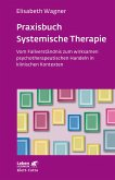 Praxisbuch Systemische Therapie (eBook, ePUB)