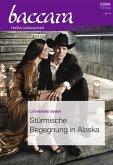 Stürmische Begegnung in Alaska (eBook, ePUB)