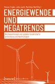 Energiewende und Megatrends (eBook, ePUB)