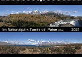 Im Nationalpark Torres del Paine (Chile) (Wandkalender 2021 DIN A2 quer)