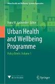 Urban Health and Wellbeing Programme (eBook, PDF)