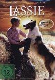 Lassie ist die Beste
