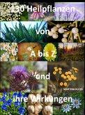 Was sind Heilpflanzen und ihre Wirkungen? (eBook, ePUB)