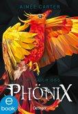 Der Fluch des Phönix (eBook, ePUB)