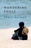 Wandering Souls (eBook, ePUB)
