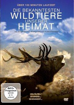Die Bekanntesten Wildtiere Unserer Heimat - Diverse