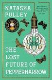 The Lost Future of Pepperharrow (eBook, ePUB)