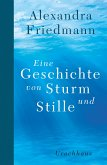 Eine Geschichte von Sturm und Stille (eBook, ePUB)
