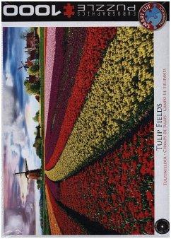 Tulpenfelder Niederlande (Puzzle)