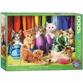 Eurographics 6000-5543 - Andrew Farley, Kitten Pride, Katzen, Puzzle, 1000 Teile