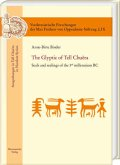 The Glyptic of Tell Chuera