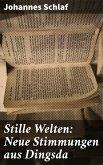 Stille Welten: Neue Stimmungen aus Dingsda (eBook, ePUB)