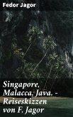 Singapore, Malacca, Java. - Reiseskizzen von F. Jagor (eBook, ePUB)