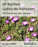 Südlich der Hurricaines (eBook, ePUB)