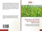 Atténuation des impacts de la riziculture sur le climat et l'eau