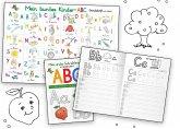 Mein buntes Kinder-ABC Grundschrift mit Artikeln Lernposter DIN A3 laminiert + Schreiblernheft DIN A4, 2 Teile