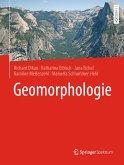 Geomorphologie (eBook, PDF)