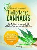 Heilpflanze Cannabis
