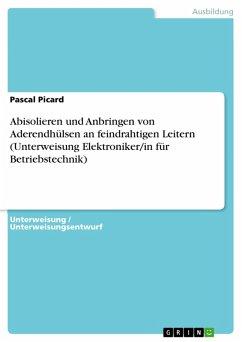 Abisolieren und Anbringen von Aderendhülsen an feindrahtigen Leitern (Unterweisung Elektroniker/in für Betriebstechnik) (eBook, PDF)