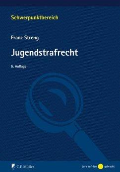 Jugendstrafrecht - Streng, Franz