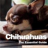 Chichuahuas