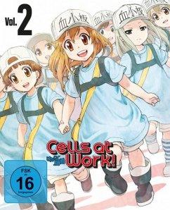 Cells at Work! - Vol. 2 Mediabook