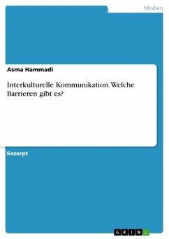 Interkulturelle Kommunikation. Welche Barrieren gibt es? (eBook, PDF)