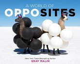 A World of Opposites (eBook, ePUB)