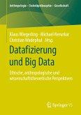 Datafizierung und Big Data (eBook, PDF)