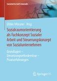 Sozialraumorientierung als Fachkonzept Sozialer Arbeit und Steuerungskonzept von Sozialunternehmen (eBook, PDF)
