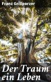 Der Traum ein Leben (eBook, ePUB)