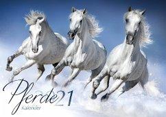 Pferde 2021