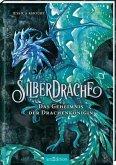 Das Geheimnis der Drachenkönigin / Silberdrache Bd.2