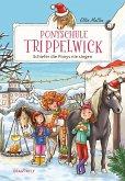 Schiefer die Ponys nie singen / Ponyschule Trippelwick Bd.3