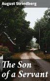 The Son of a Servant (eBook, ePUB)