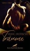 Heiße Erotische Träume   30 Erotische Geschichten (eBook, ePUB)
