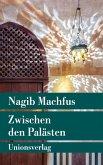 Zwischen den Palästen (eBook, ePUB)