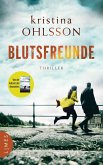 Blutsfreunde / Martin Benner Bd.3