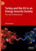 Turkey and the EU in an Energy Security Society