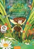 Das große Feen-Schlamassel / Klara Katastrofee Bd.1 (eBook, ePUB)