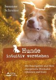 Hunde intuitiv verstehen