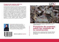 Prospecto de expertos sobre los residuos de la construcción