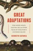 Great Adaptations (eBook, PDF)
