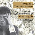December Chrysanthemum